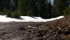 Sierra Nevada Snow Pack & Snow Melt