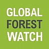 Voices for Global Forest Watch by the WRI